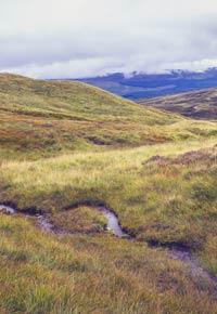 El agua, la marca del whisky escocés