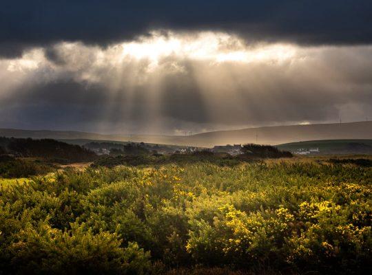 Soleil sur la lande écossaise